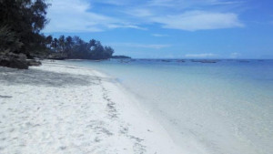 Paradise Beach Resort, fotka 11