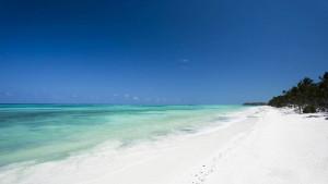 Karafuu Beach Resort & SPA, fotka 1