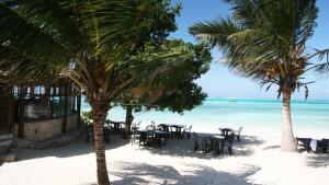 Karafuu Beach Resort & SPA, fotka 11