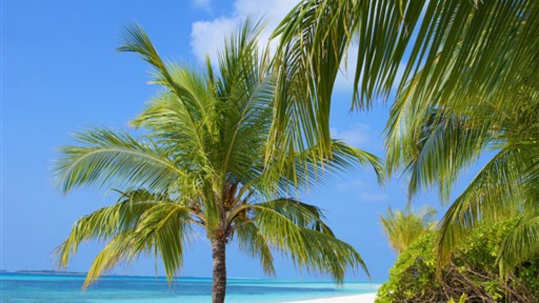 Kuredu Island Resort, fotka 6