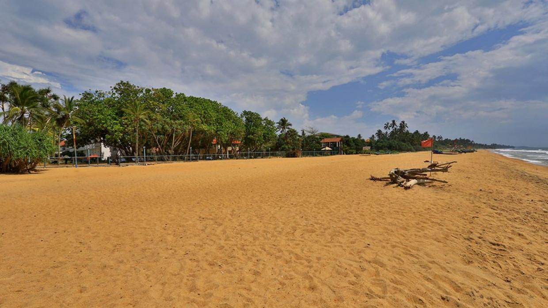 Hibiscus Beach, fotka 6