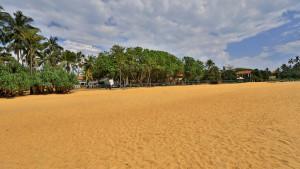 Hibiscus Beach, fotka 7