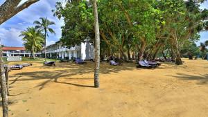 Hibiscus Beach, fotka 8