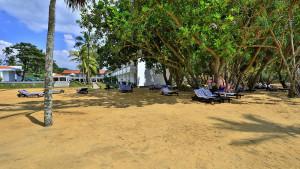 Hibiscus Beach, fotka 9