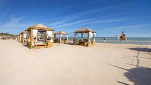 Amwaj Oyoun Resort & Casino, fotka 4