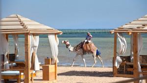 Amwaj Oyoun Resort & Casino, fotka 19