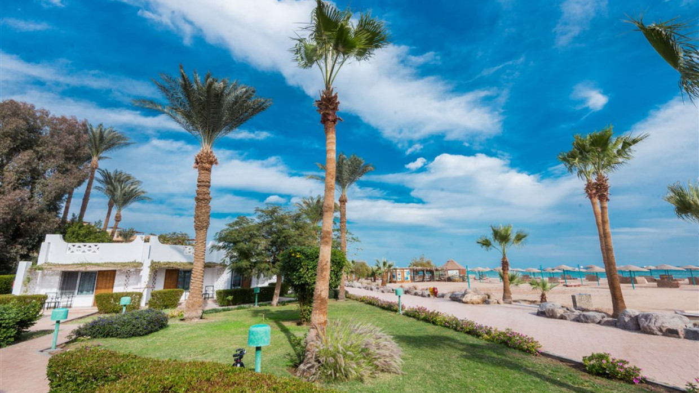 Shams Safaga Resort, fotka 3