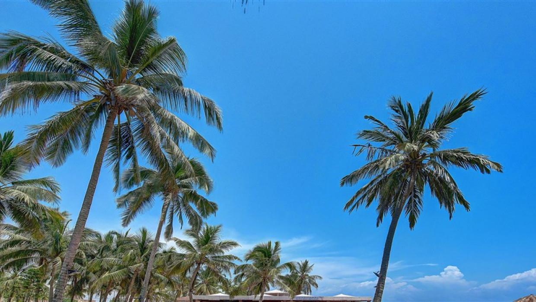 Crowne Plaza Resort Salalah, fotka 18