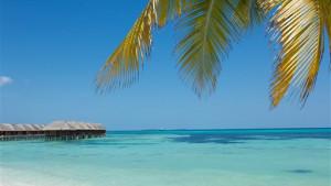 LUX* South Ari Atoll, fotka 11
