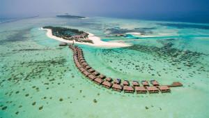 Cocoon Maldives, fotka 24