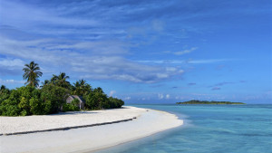 Cocoon Maldives, fotka 28