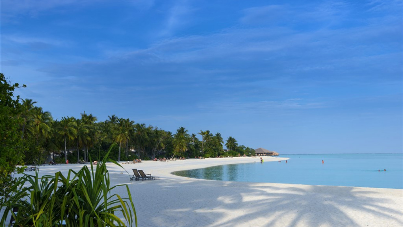 Cocoon Maldives, fotka 30