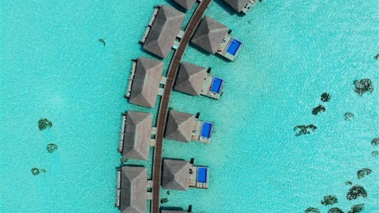 Cocoon Maldives, fotka 31