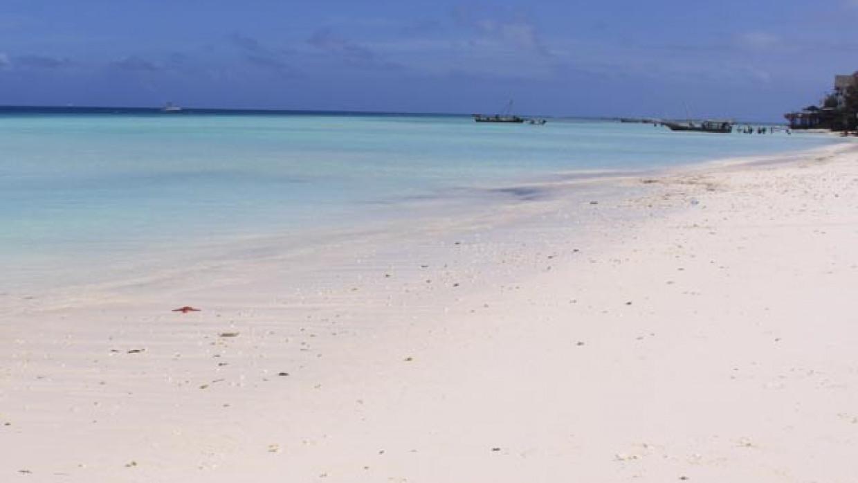 Langi Langi Beach Bungalows, fotka 9