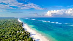 Diani Sea Resort, fotka 8