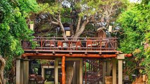 Jungle Beach Hotel, fotka 8