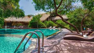 Jungle Beach Hotel, fotka 13