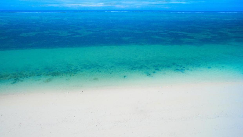 Indigo Beach Zanzibar, fotka 0