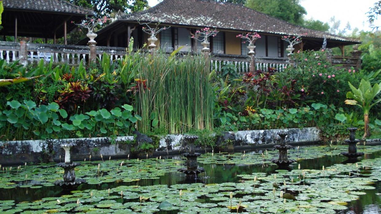 Na skok na Bali, fotka 12