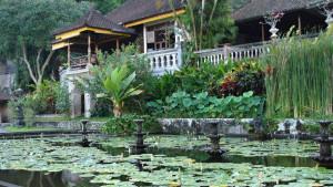 Na skok na Bali, fotka 13