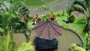 Na skok na Bali, fotka 15