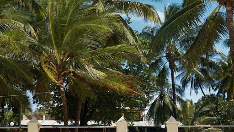 Neptune Beach Resort, fotka 0