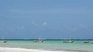 Neptune Paradise Beach Resort & Spa, fotka 9