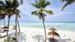 RIU Atoll Maafushi Island, fotka 8