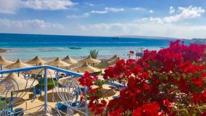 King Tut Aqua Park Beach Resort, fotka 7