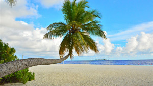 Fihalhohi Island Resort, fotka 0