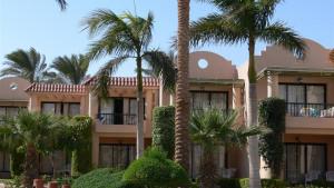 Ali Baba Palace, fotka 8