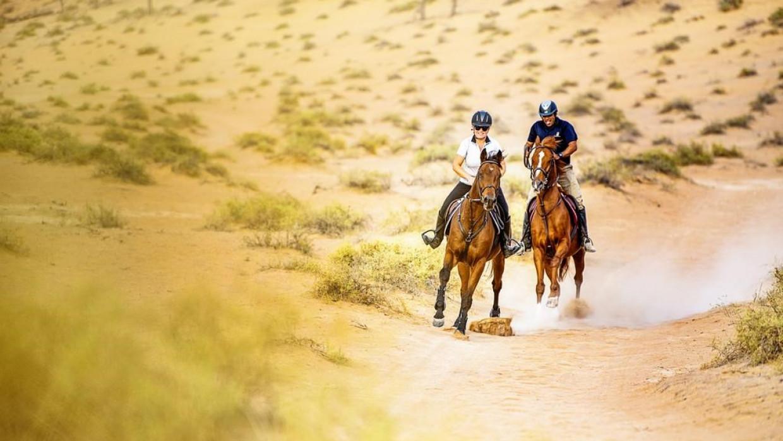 The Ritz-Carlton Ras Al Khaimah (Al Wadi Desert), fotka 22