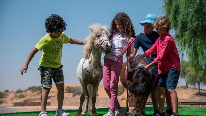 The Ritz-Carlton Ras Al Khaimah (Al Wadi Desert), fotka 26
