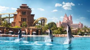 Atlantis The Palm, fotka 42