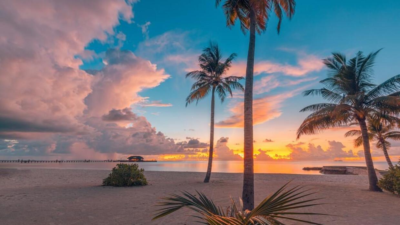 Sun Siyam Olhuveli Maldives, fotka 4