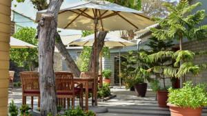 Umm Al Quwain Beach Hotel, fotka 11